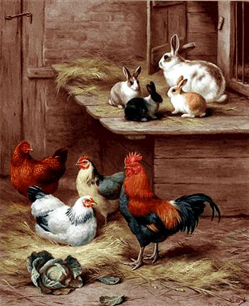 نخ و نقشه اماده حیوانات