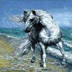 اسب دریا