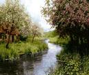 کلبه کنار رود
