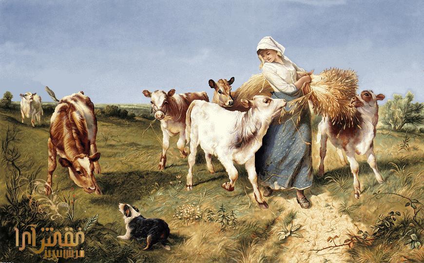 نام طرح :کشاورز  -کد E168