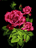 شاخه گل رز - كد D1