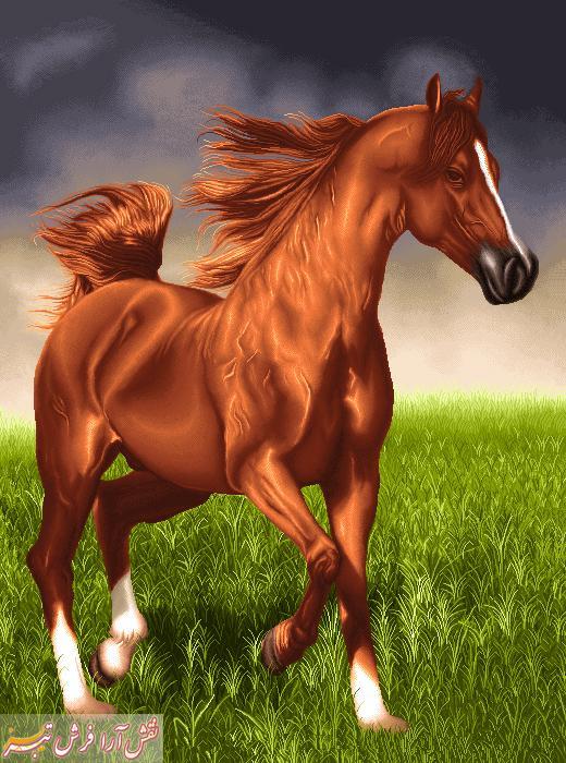 اسب -کد G - 700