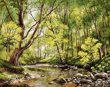 منظره رود و جنگل  -کد F23