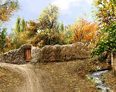 کوچه باغ پاییزی - کدF204